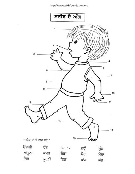 printable activities for children parts of the body punjabi activity sheet name it body parts the sikh