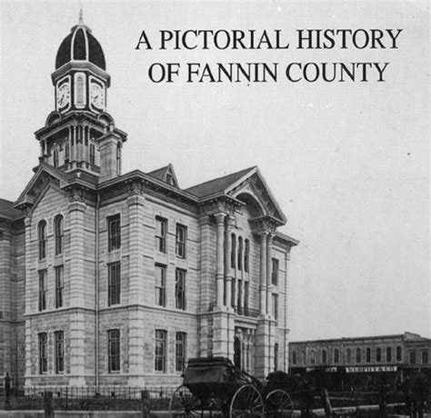 fannin county history book available e news