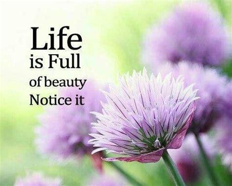 Life is full of beauty; notice it.   Blackwood Florist