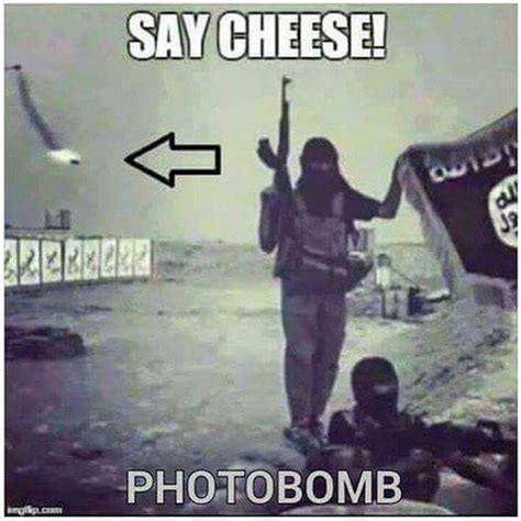 best photobomb pictures pin best photobomb the pics home on