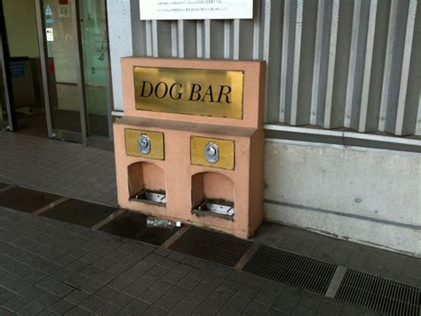 puppy bar file bar in japan 3850685822 jpg wikimedia commons