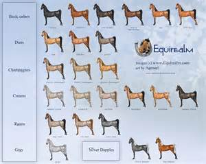 equine color calculator color chart minecraft images frompo