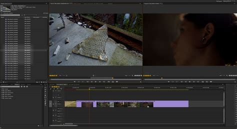 export adobe premiere to davinci resolve how to edit your amazing magic lantern 14 bit raw video on
