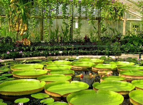 Botanical Gardens Kew Opinions On Directors Of The Royal Botanic Gardens Kew