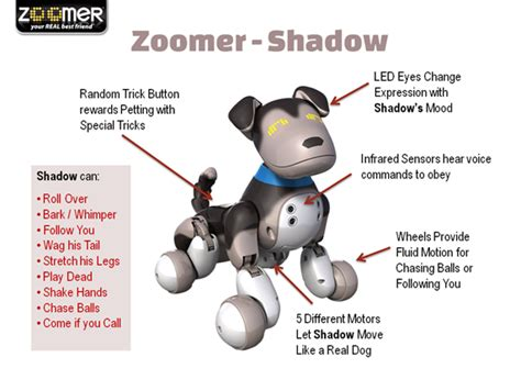 zoomer shadow zoomer commands related keywords zoomer commands long