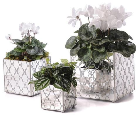 Mirrored Indoor Planters by Mirror Orchid Pot Set Silver