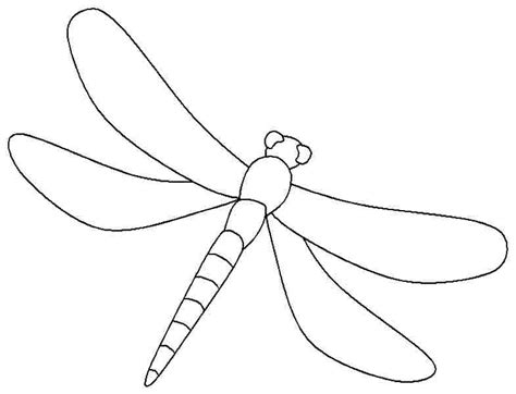 7 Best Images Of Dragonfly Printable Coloring Pages Dragonfly Colouring Pages