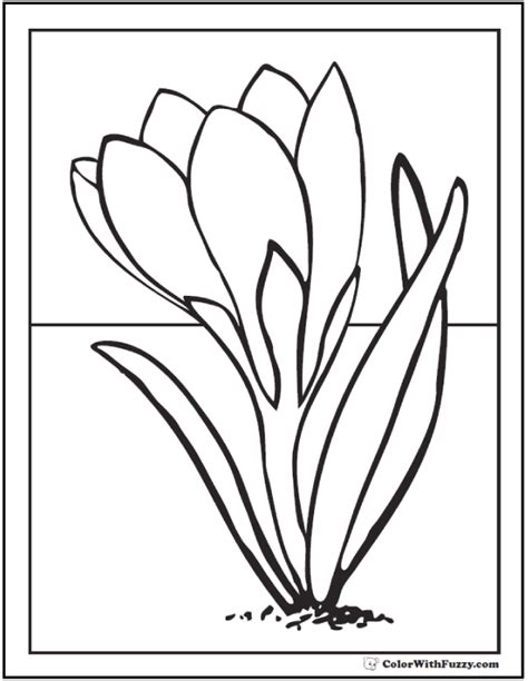 crocus flower coloring page spring flowers coloring page 28 customizable printables