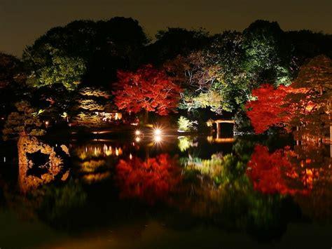 5 watchlist terbaik di bulan february greenscene co id 5 tempat terbaik untuk melihat daun musim gugur di tokyo