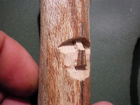 woodworking tutorial wood spirit carving tutorial pic heavy cub scout