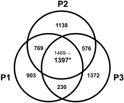 math diagram venn diagrams math exles diagram site