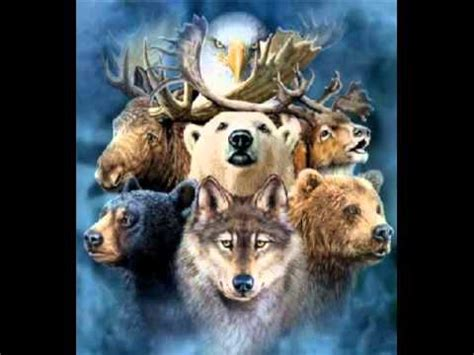 healing virtues transforming your practice through the animal reiki practitioner code of ethics books discover connect and awaken your animal spirit