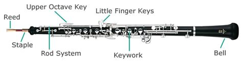 oboe diagram blank