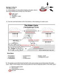 worksheets the water cycle worksheet answers chicochino