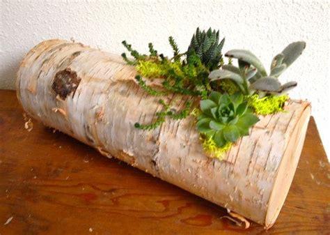 succulent birch log centerpiece