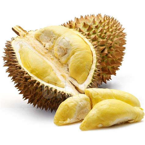 warehousehealthy blogspot com durian fruit benefits for our bodies
