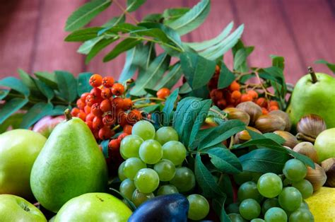 group  healthy autumnal colorful fruits stock photo