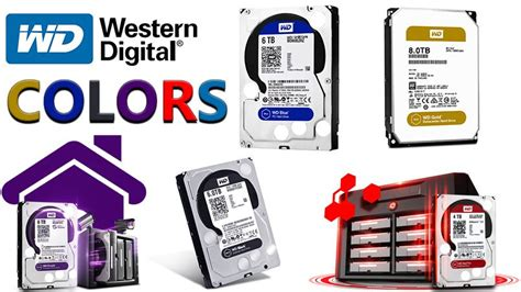 what is the difference between western digital drives