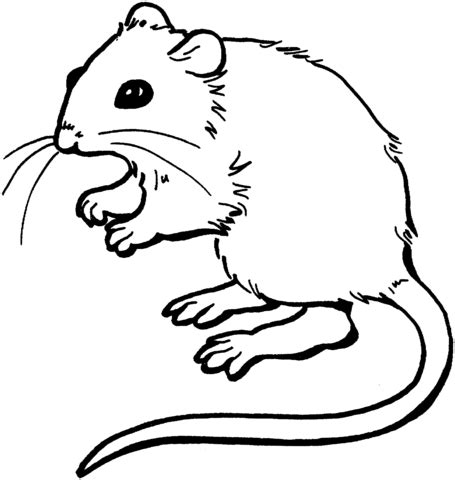 Mouse 2 Coloring Page Supercoloring Com Mouse Coloring Pages