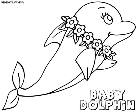 coloring pages of dolphins dolphin coloring pages tubidportal