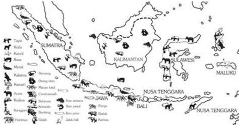 Atlas Hewan persebaran hewan fauna dan tumbuhan flora di indonesia