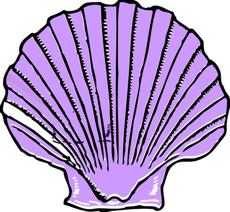 shell clipart purple shell clip at clker vector clip