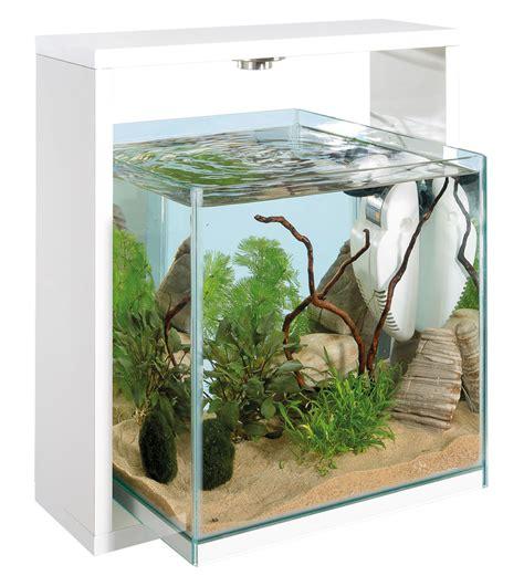 arredare un acquario arreda la casa con stile con i migliori acquari in vetro