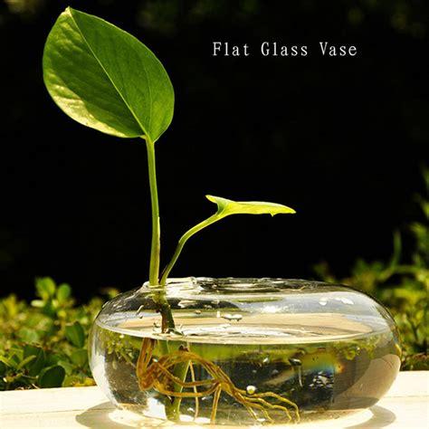 get cheap flat glass vases aliexpress