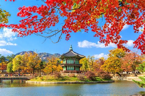 South Korea Search South Korea Travel Lonely Planet