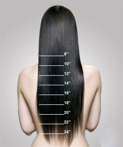 hair length chart length chart how to measure your extensions length