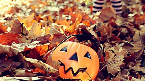 imagenes halloween tumblr image gallery halloween tumblr