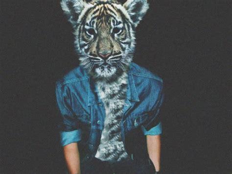 imagenes hipster animales animal head on tumblr