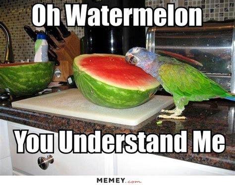 Fruit Memes - funny fruit memes