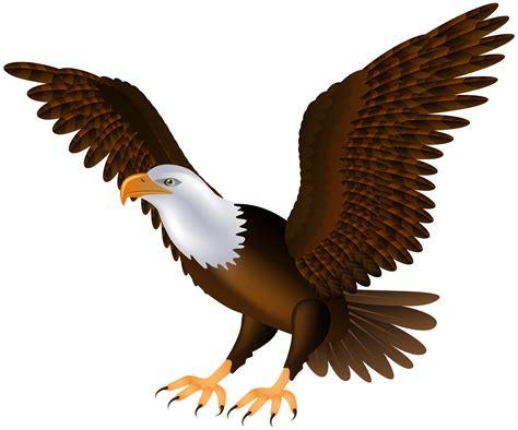 eagle clipart eagle clip images 101 clip
