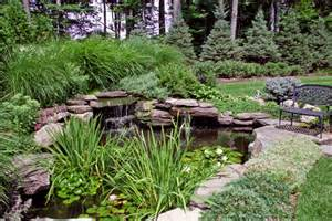 Backyard koi pond and garden in brentwood ripple pond covers