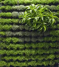Green Garden Ideas Applicative Vertical Garden Designs Iroonie