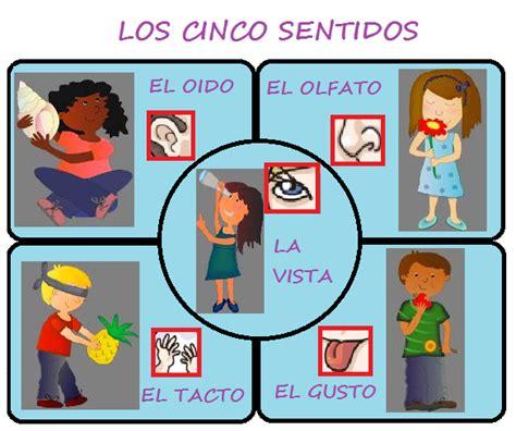 imagenes infantiles sobre los sentidos dibujos sobre los cinco sentidos para primaria imagui