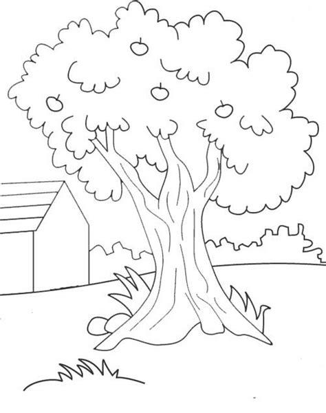 belajar mewarnai gambar pohon | Gambar, Pohon, Buku mewarnai