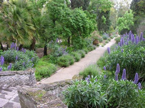 giardini liguria giardini hanbury festeggiano i 150 anni liguria ansa it