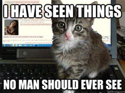 Scared Cat Meme - memes quickmeme