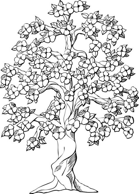 detailed tree coloring page tree coloring pages for adults google search wood