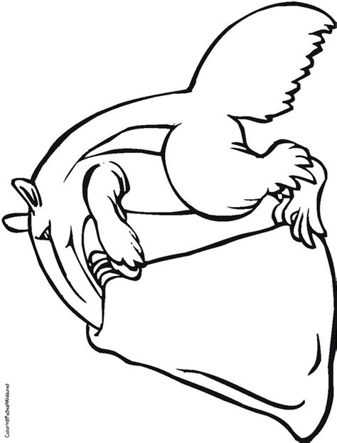 anteater coloring page animals town color sheet clipart