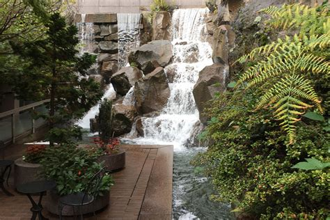 Waterfall Garden Seattle by Seattle S Waterfall Garden Park Marks Roots Of Ups The