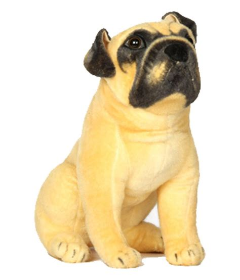 average price of a pug puppy v golly jolly nx soft pug puppy buy v golly jolly nx soft pug puppy
