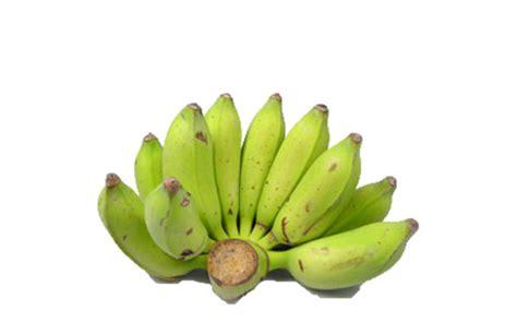 Thailand Address Lookup Thai Banana Chuoi Thai 30lbs L V Food Supply