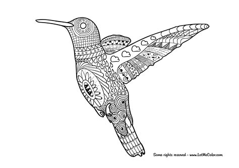 hummingbird coloring pages letmecolor free printable coloring pages made by