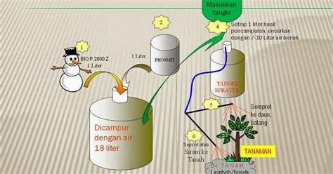 Pupuk Untuk Perangsang Bunga cara pembuatan pupuk kcl dan n organik serta perangsang