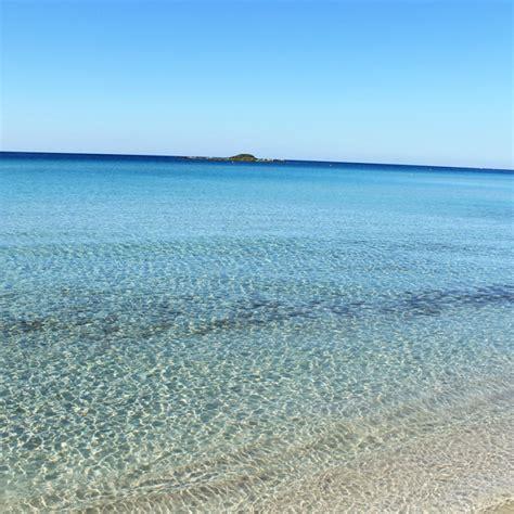 spiaggia porto cesareo spiaggia tab 249 e dune spiagge porto cesareo salento puglia