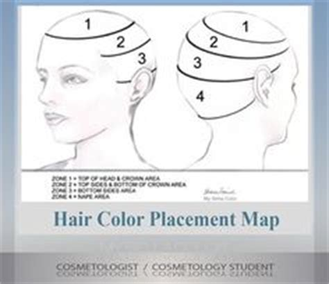 foil placement for short hair hair cutting techniques on pinterest how to cut hair