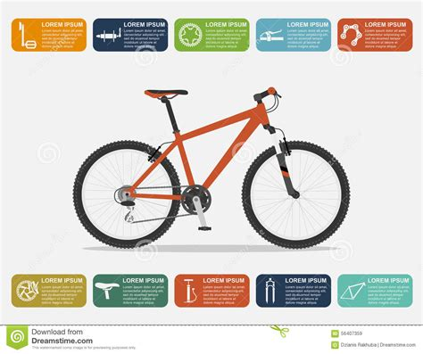 bike infographic stock vector image 56407359